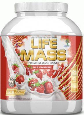 Гейнер Tree of Life Life Mass 2730 гр